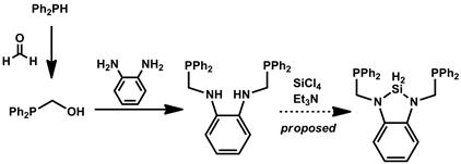 Report: Ambiphilic Scaffolds for Cooperative Metal-Ligand