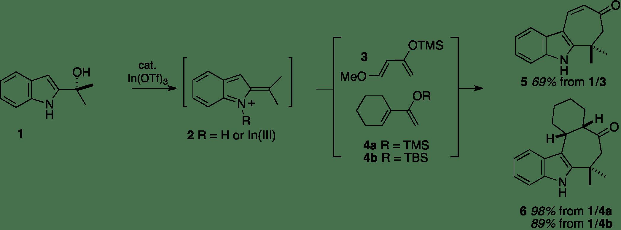 Report: Exploring Indolidene Chemistry: New Opportunities