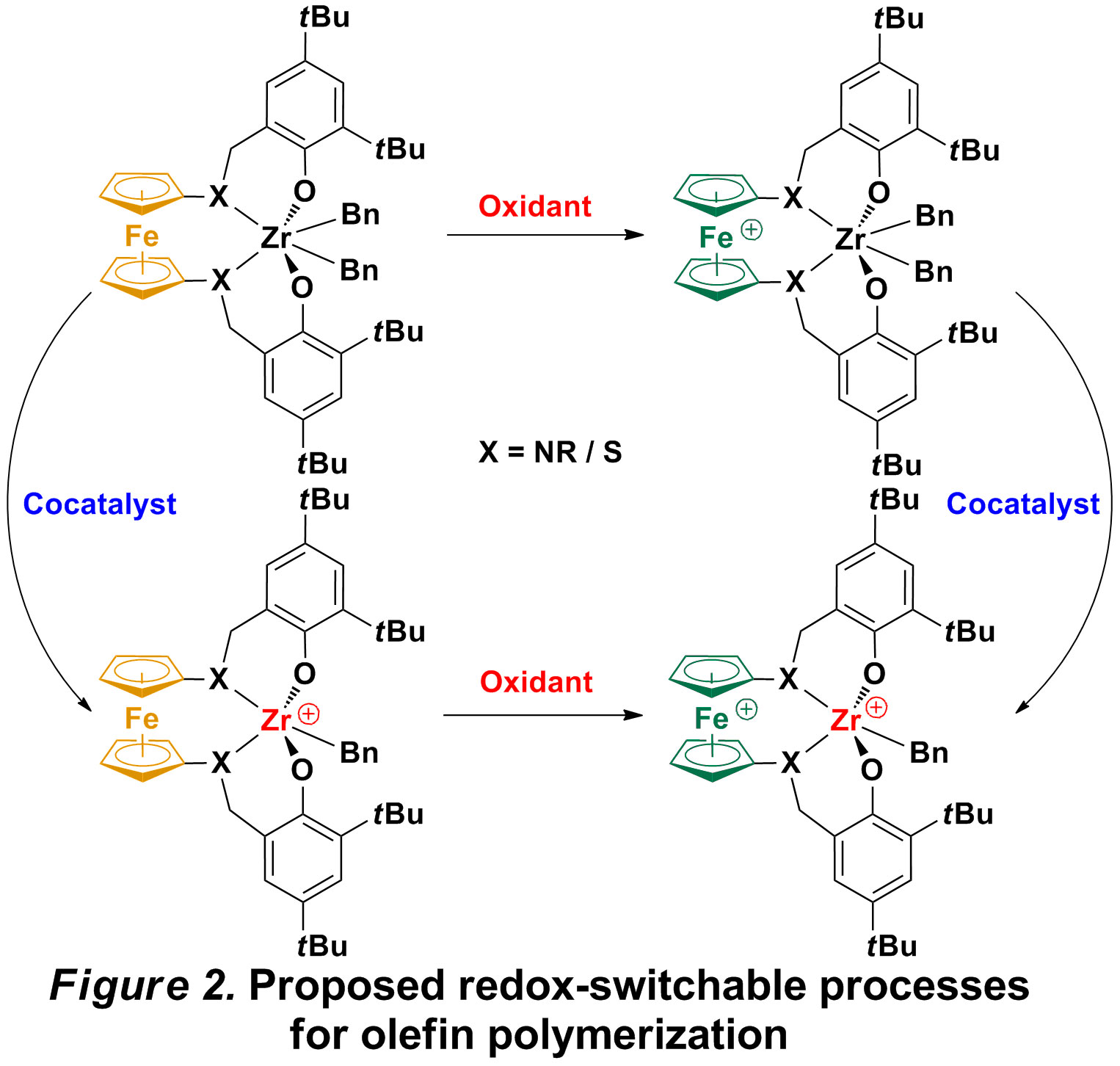 Report: Non-Innocent Ligands as a Redox Switch for