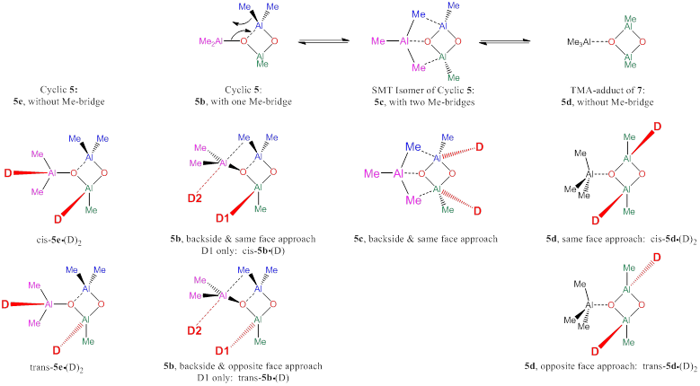 Report: Mechanistic Studies of Transition-Metal Catalyzed
