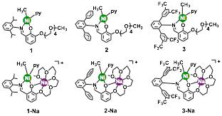 Report: Upgrading Polyethylene: Copolymerization of
