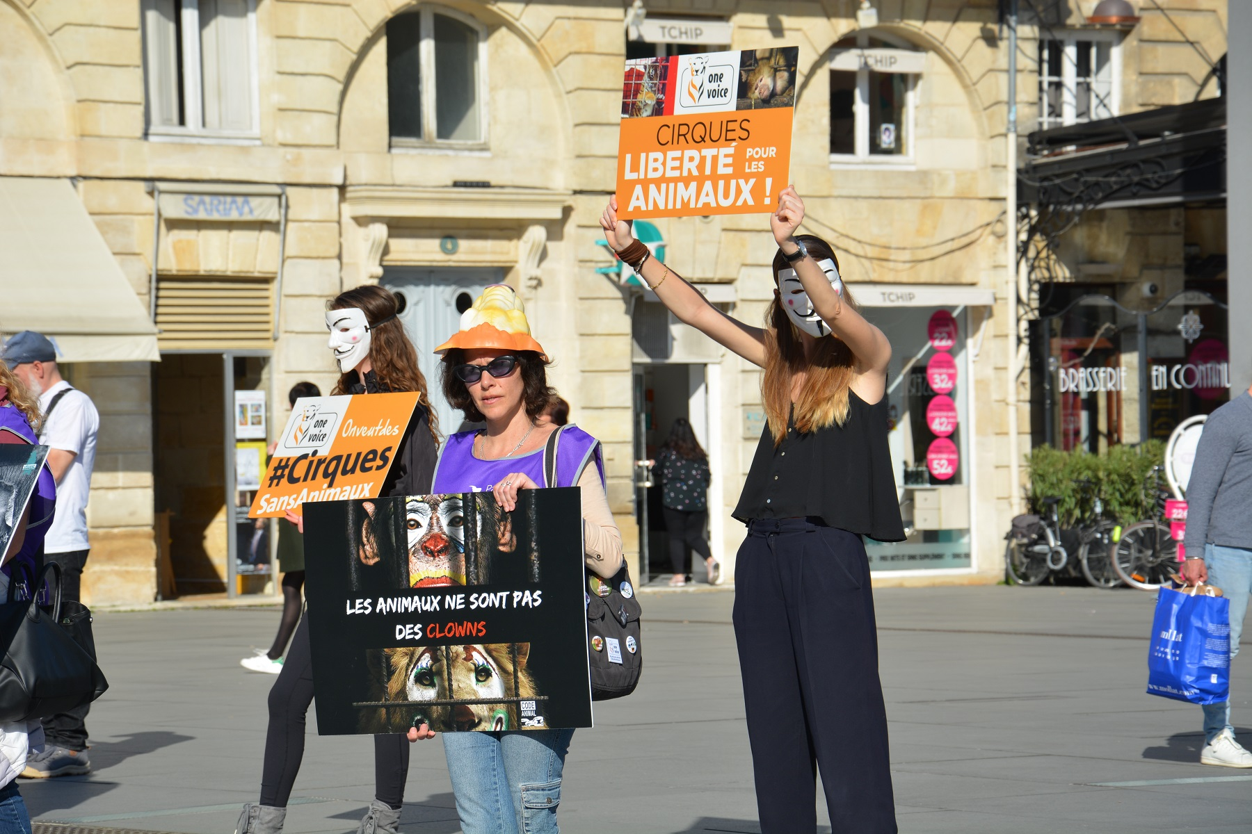 manifestation_mairie_bordeaux_animaux_cirques_triangle2