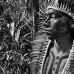 Brazil's Reckless COVID Response Threatens Indigenous Survival 22