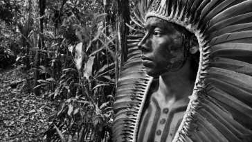 Brazil's Reckless COVID Response Threatens Indigenous Survival 9
