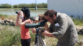 Observando aves en la Marjal de Cullera