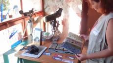 Cuadernos de Tundra