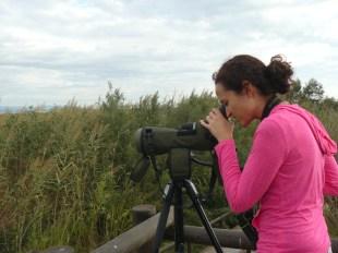 Birding Marjal dels Moros