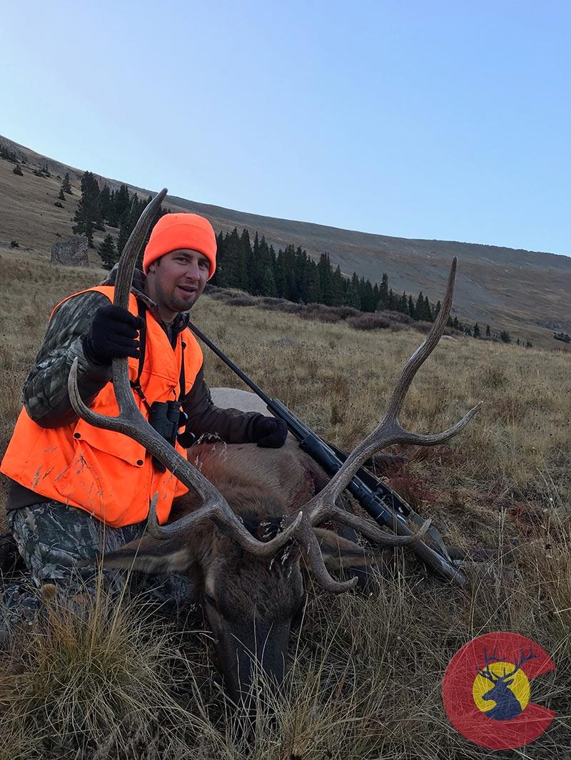 19 Rifle Bull Elk