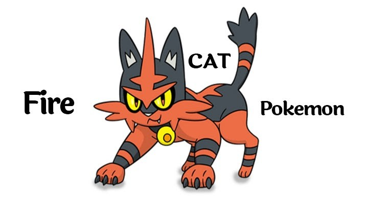 Fire Cat Pokemon