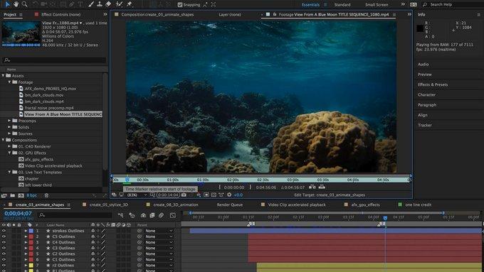 Adobe Digital Video 2016