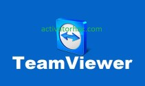 TeamViewer Pro Crack