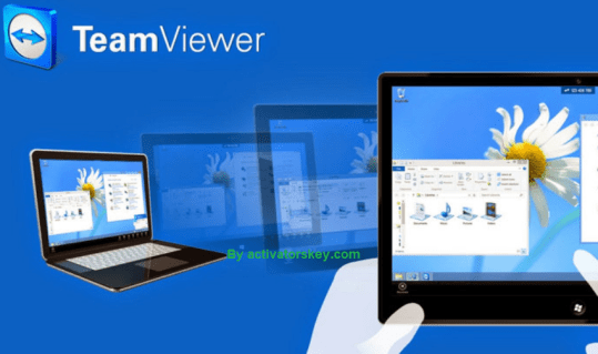 TeamViewer License Code