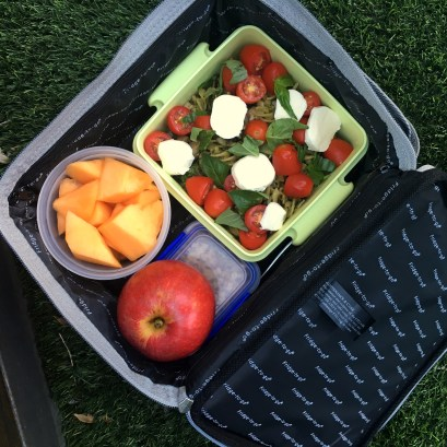 Fridge to Go - great for school lunches
