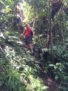 Plan your vacation with Active Caribbean Travel – The best islands to hike, plus general island & hiking guide info. Plan your trip today!