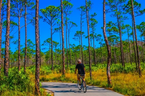 Cycling in Jonathan Dickinson State Park