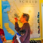 Scheid Vineyards Tasting Room