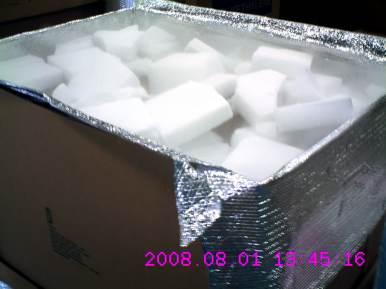 perishable-ice-01