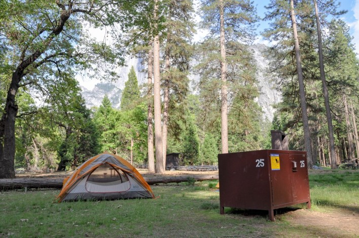 Yosemite National Park to Begin Late-Summer Campground ...