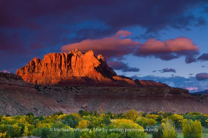How to Create Fall Photography in Zion National Park