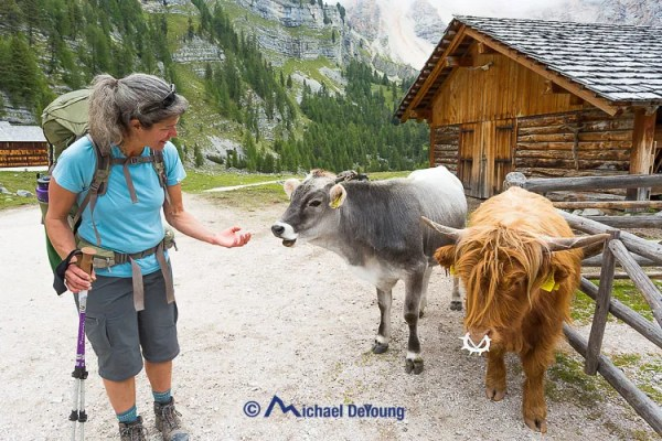 Lauri greeting the locals at Ucia de Gran Fanes Alta Via 1, NaturPark Fanes-Senes, Dolomites, Italy