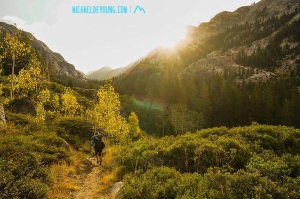 Morning descent through manzanita and aspen groves, Yosemite Wilderness