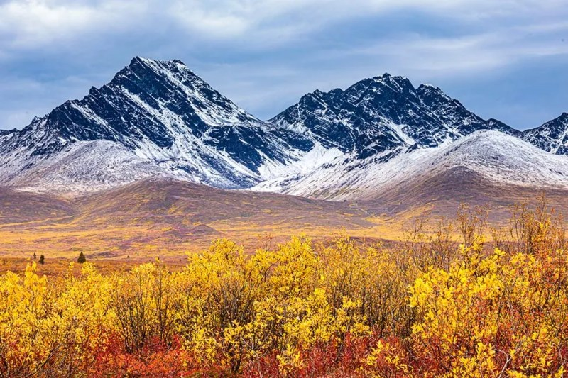 Tundra fall colors accent the recently snow dusting on the Clearwater Mountains during a private tour on Alaska's Denali Highway. © Michael DeYoung