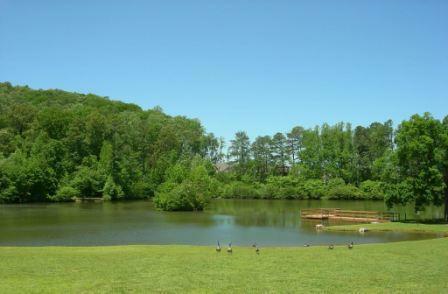 Mountain Brook Pond