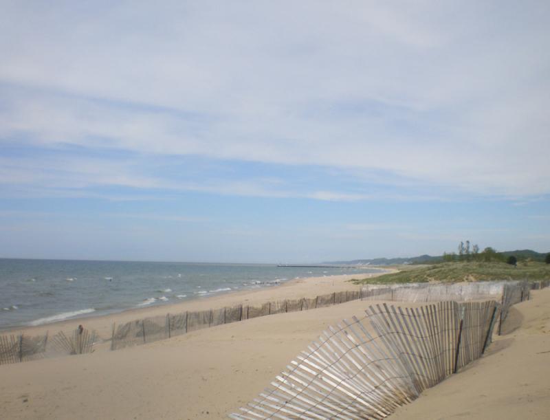 Oval Beach Saugatuck was mine alone today