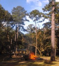 Before you Burn! Get a Permit from the Florida Division of