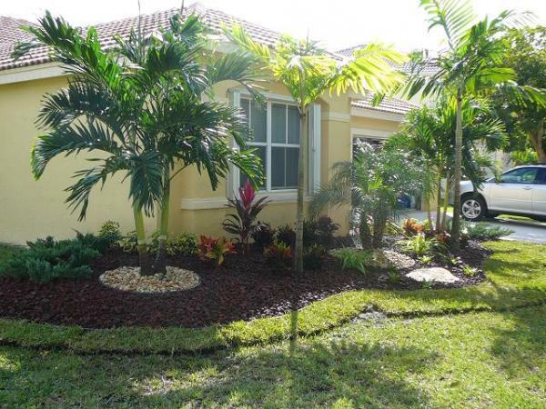 weston fl homes-dress landscaping