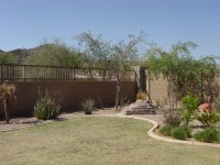 Landscape beginner: Arizona backyard landscaping pictures ...