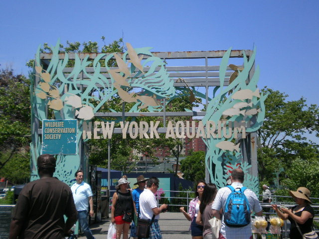 coney island aquarium brooklyn