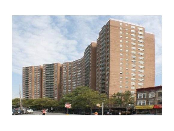 co-ops for sale in flatbush brooklyn