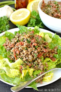 Best Plant Based Entree Recipes