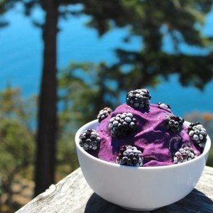 Vegan blackberry ice cream