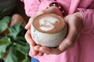 medicinal mushroom hot chocolate for Immune Support by Active Vegetarian