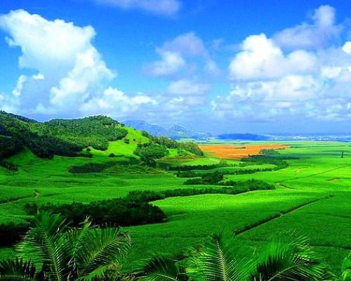 Wyjazdy Mauritius