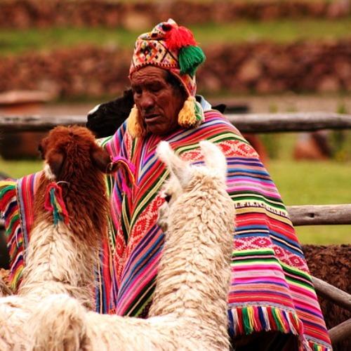 Wyjazdy do Boliwii