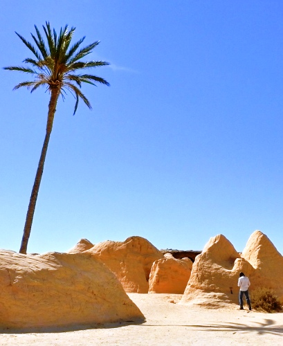 Wyjazdy do Tunezji