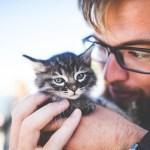 【YOUは何しに日本へ? 谷中】イタリアンスタイル猫カフェレストラン『宿木カフェ』のお店・メニューを紹介 2021/3/1放送