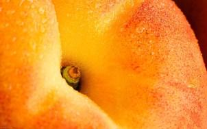 Peach-Close-Up-1-food-wallpaper-fruit-wallpapers-1920x1200