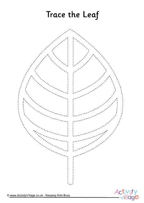Leaf Tracing Page