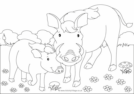 Warthogs Scene Colouring Page