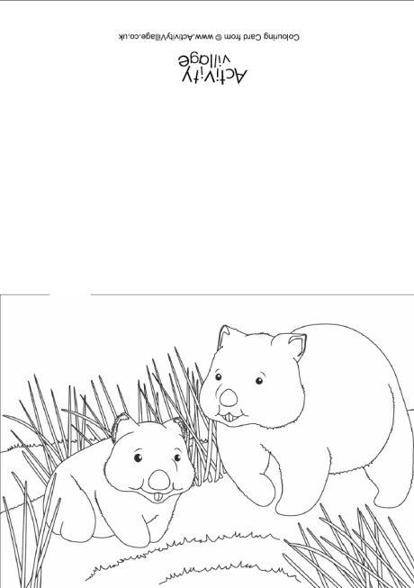 Wombat Scene Colouring Card