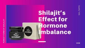 Shilajit's Effect for Hormone Imbalance