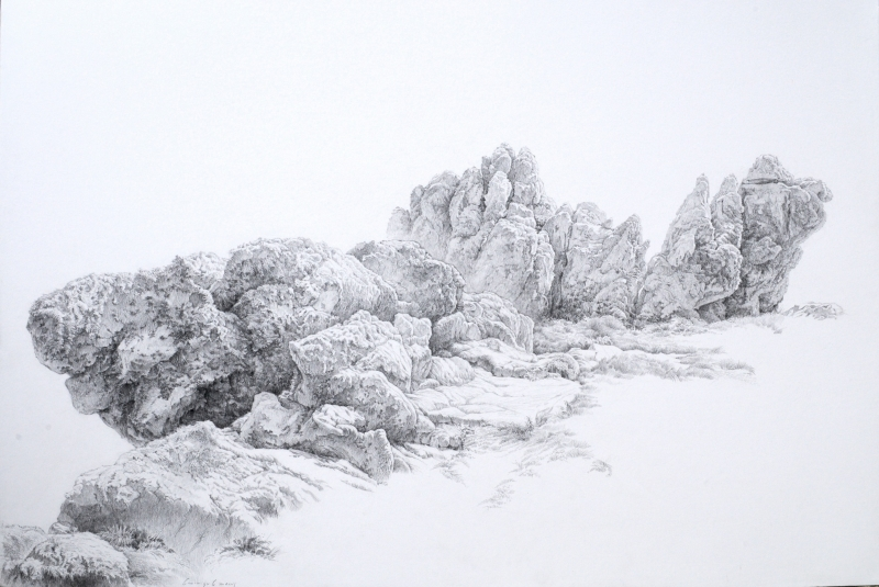 rocher moussu dans la lande du pern 70-100 cm - 1920 72 dpi