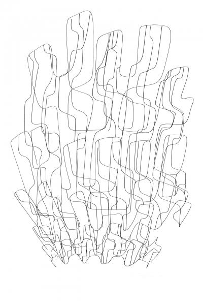 06 Shells 2 100x70cm Dessin à l'encre sur papier 2008 1920 72 dpi