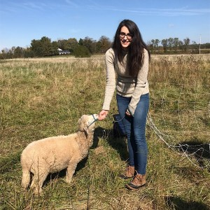 Michelle from Color Wheel holding a sheep