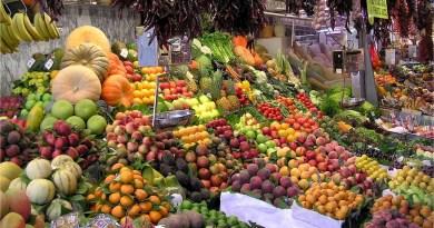 Chile: Crean biopapel que reduciría en un 60% las pérdidas de fruta en exportaciones
