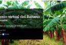 I Simposio Virtual de Banano